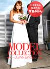 モデルコレクション 33
